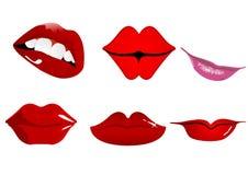губы Стоковое Изображение RF