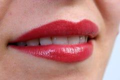 губы Стоковые Изображения