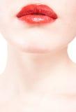губ крупного плана предпосылки белизна красивейших красная Стоковое фото RF