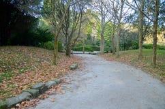 Гулять в парк Стоковая Фотография RF