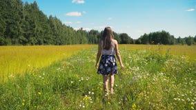 гулять девушки поля Стоковые Изображения RF
