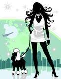 гулять женского пуделя города успешный Стоковые Изображения RF