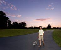 гулять захода солнца человека собаки старший Стоковые Изображения
