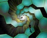 гулять клеток Стоковое Изображение RF