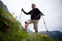 гулять красивого человека нордический старший стоковая фотография rf