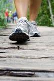 гулять людей парка Стоковое Фото