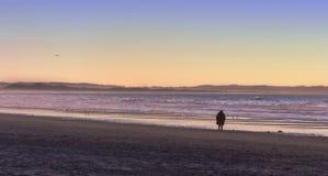 Гулять на пляж Стоковые Изображения RF