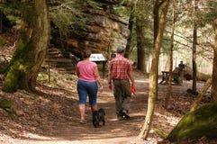 гулять парка собаки Стоковое Фото