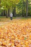 гулять парка человека Стоковое Изображение