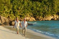 гулять пар пляжа тропический Стоковые Изображения RF