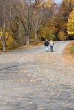 гулять пар Стоковое фото RF