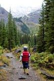 гулять природы мальчика Стоковая Фотография RF