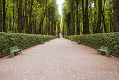 гулять путя парка осени Стоковое Фото