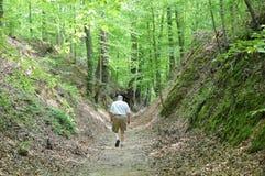 гулять следа u natchez старый s Стоковое Фото