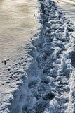 гулять снежка путя следов ноги Стоковые Изображения