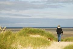 гулять собаки пляжа близкий Стоковые Фотографии RF