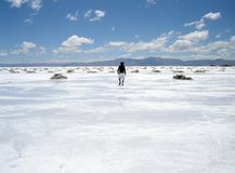 гулять соли человека поля Стоковые Изображения