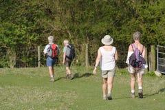 гулять старшия людей Стоковые Изображения