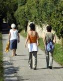гулять тропки Стоковые Фотографии RF