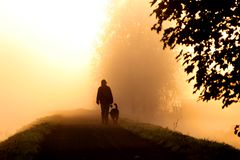 гулять тумана Стоковая Фотография