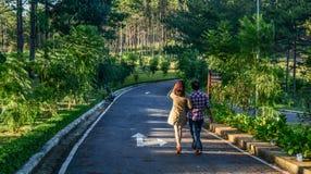гулять улицы людей стоковое изображение