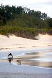 гулять человека собаки пляжа стоковое изображение