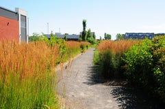 Гуляя тропка Стоковое Фото