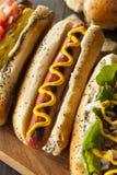 Гурман зажарил всех собак Hots говядины Стоковая Фотография RF