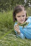 Гусеница девушки рассматривая на лист Стоковые Фотографии RF