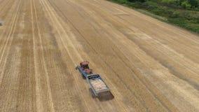 Гусеничный трактор с трейлером управляет через сжатое пшеничное поле акции видеоматериалы