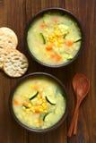 Густой суп мозоли и Courgette Стоковые Изображения RF