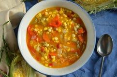Густой суп мозоли Vegan Стоковая Фотография