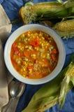 Густой суп мозоли Vegan Стоковые Фото