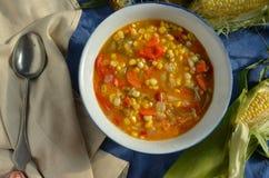 Густой суп мозоли Vegan Стоковая Фотография RF