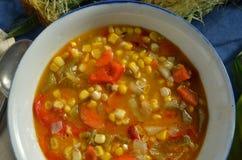 Густой суп мозоли Vegan Стоковое Фото