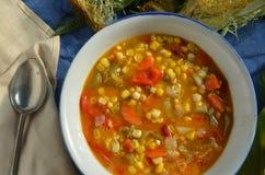 Густой суп мозоли Vegan Стоковые Фотографии RF