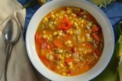 Густой суп мозоли Vegan Стоковое Изображение