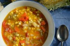 Густой суп мозоли Vegan Стоковое Изображение RF