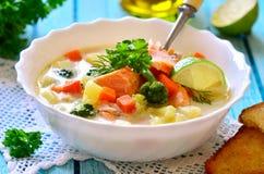 Густой суп с форелью стоковые фотографии rf