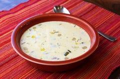 густой суп Стоковая Фотография