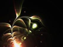 Густолиственный цветок фрактали в росте Стоковое Фото