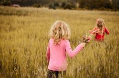 гулять девушки поля Стоковые Изображения