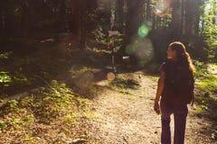 гулять девушки пущи Стоковая Фотография