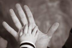 гулять малыша захода солнца удерживания руки сада ребенка мальчика предпосылки взрослых Стоковые Изображения