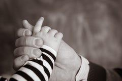 гулять малыша захода солнца удерживания руки сада ребенка мальчика предпосылки взрослых Стоковые Фото