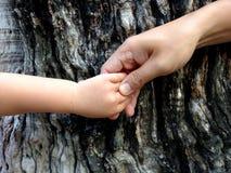 гулять малыша захода солнца удерживания руки сада ребенка мальчика предпосылки взрослых Стоковое Изображение RF