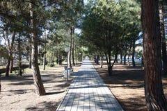 гулять дороги Стоковое Изображение RF