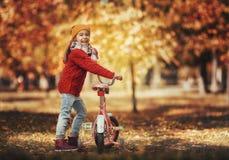 гулять парка девушки осени Стоковая Фотография RF