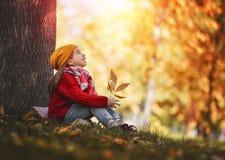 гулять парка девушки осени Стоковая Фотография