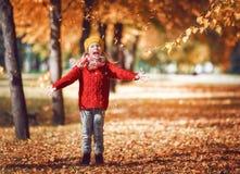 гулять парка девушки осени Стоковые Фотографии RF